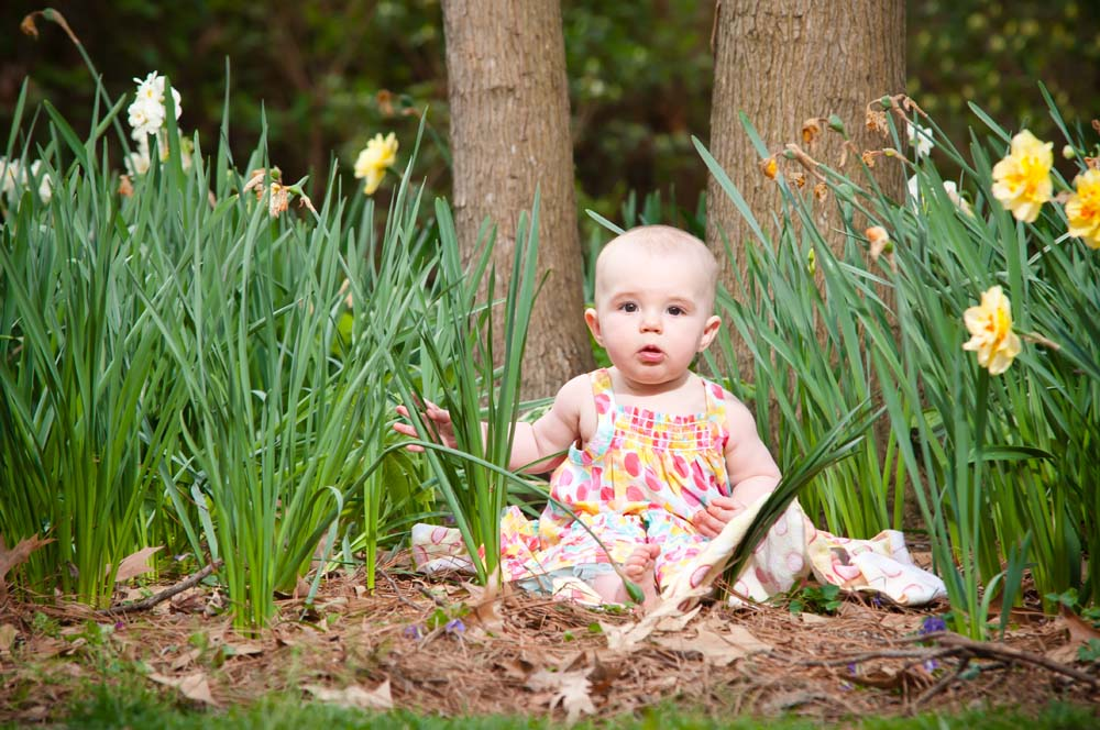 three month old session at Norfolk Botanical Gardens in Norfolk Virginia