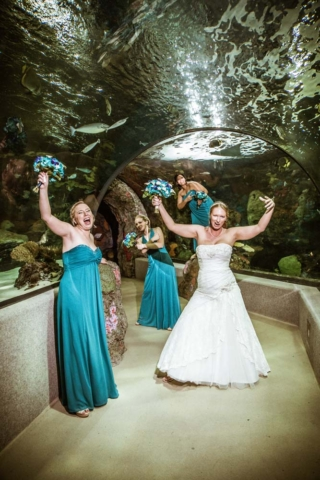 Virginia Aquarium wedding in the underwater tunnel in Virginia Beach Virginia